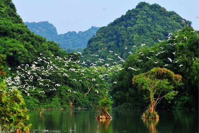 things to do in ninh binh 7