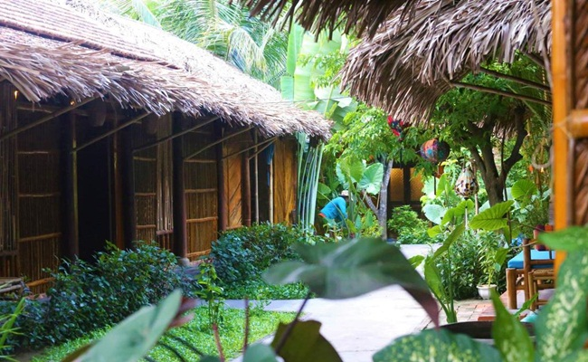 where to stay in hoi an under coconut tree 1