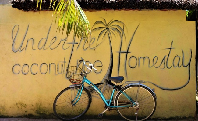 where to stay in hoi an under coconut tree 2