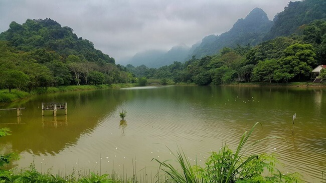 cuc phuong national park 4