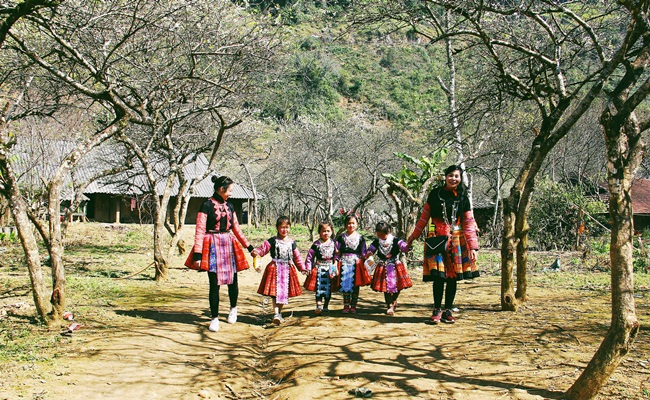 best time to travel to mai chau 1
