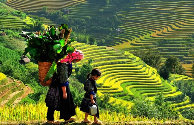 valleys in Vietnam 2