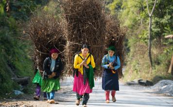 vietnam trekking tours 2