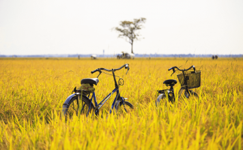 vietnam cycling tours 3