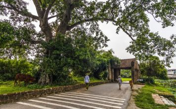 day-trip-to-duong-lam-ancient-village-2